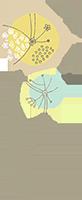 pediatric naturopath